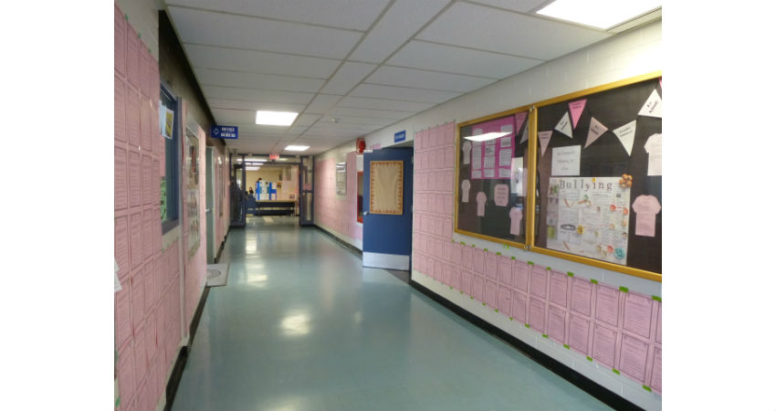 Pink Shirt Day Pledges Colour our Hallway